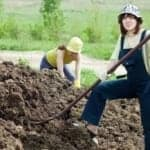 On Saving Money and Spreading Manure