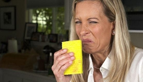 Stinky sponges, women smelling stinky kitchen sponge
