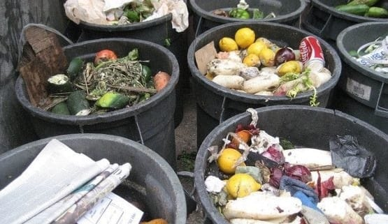 Rotten produce filling up garbage cans