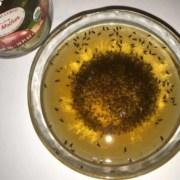 bowl of apple cider vinegar becomes trap for fruit flies