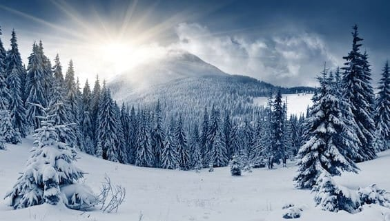 beautiful-winter-landscape-with-snow-covered-trees