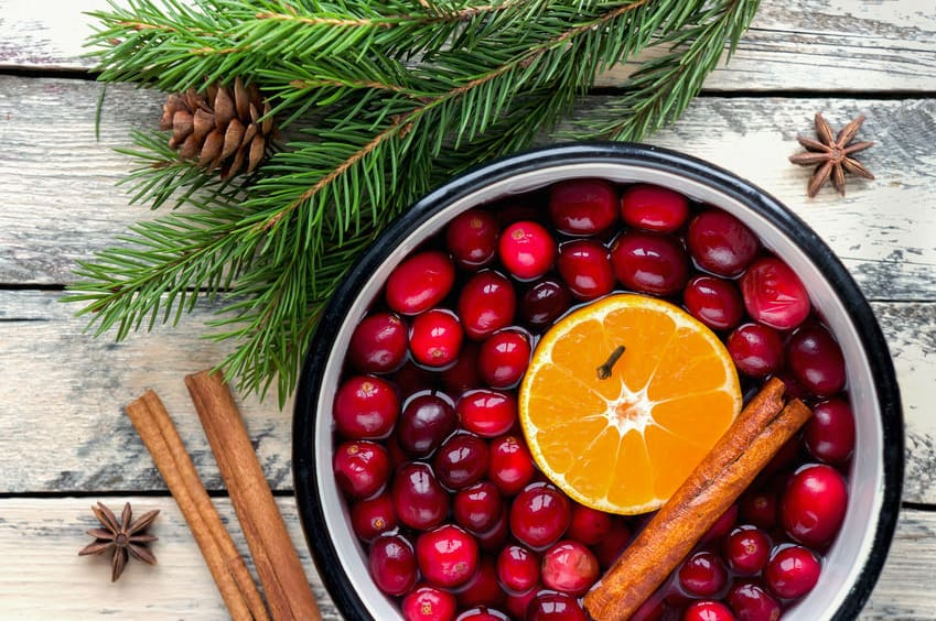Cranberries, oranges and cinnamon cooking in a pot creating a lovely scent in the home