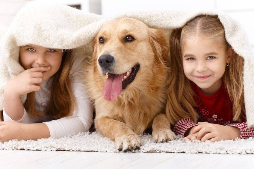 Cute-little-girls-having-fun-with-golden-retriever-lying-prone-on-floor-at-home-under-blanket-smiling.
