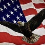 Photo of a flying bald eagle with a United States of American flag in the background.