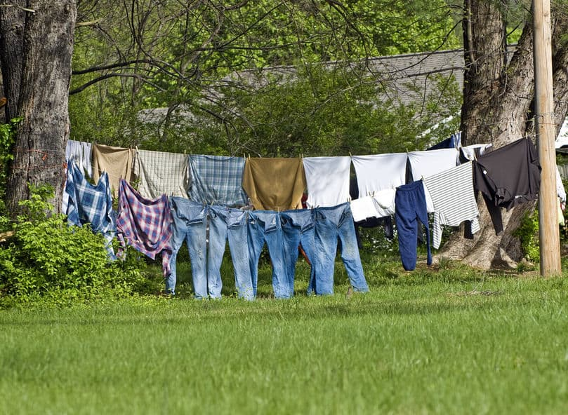Men's jeans and shirts hanging on clothes line between tow trees in the woods