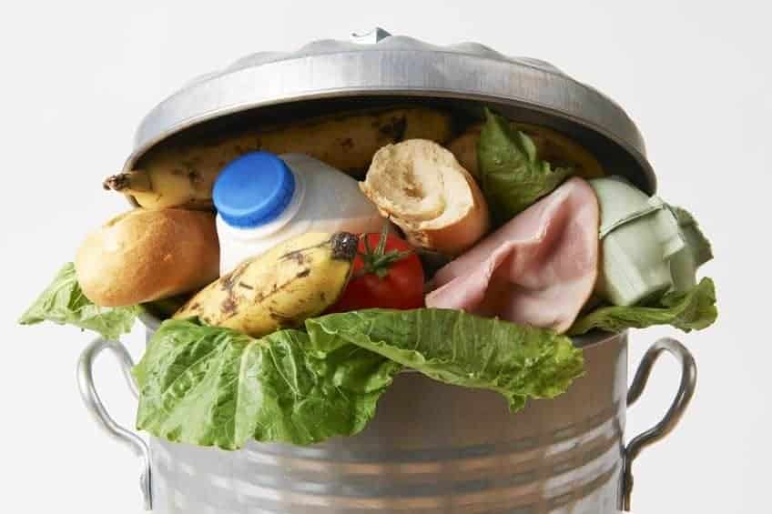 Garbage can full of rotten food