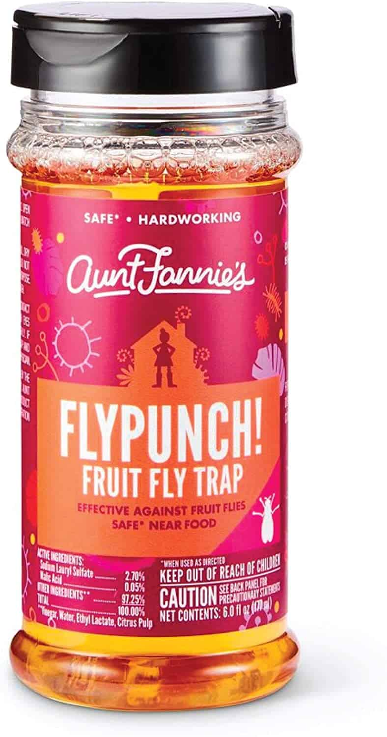 Aunt Fannie's Fly Punch fruit fly trap
