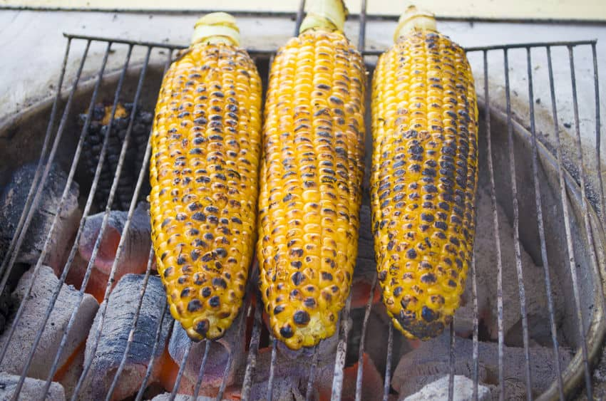 Cooking corn on the cob on the open grill