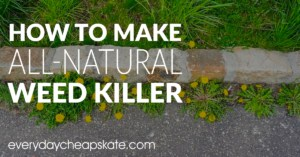 How to Make All-Natural Weed Killer—Super Easy and Better Than Roundup!