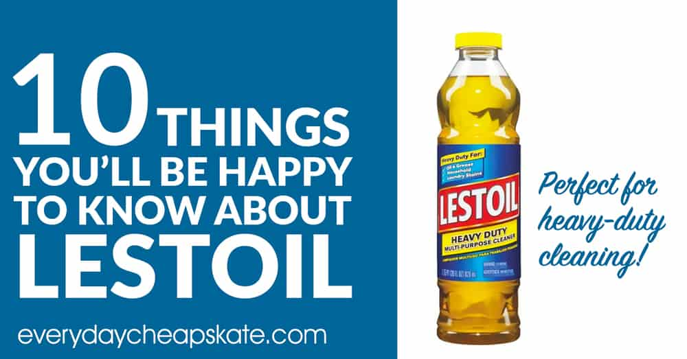 10 Things To Know About Lestoil Everyday Cheapskate