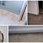 What are Those Grimy Black Lines Around the Edges of My Carpet?