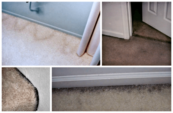 filtration-soiling-resulting-in-ugly-grimy-stains-on-carpet