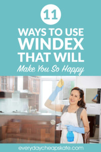 11 Ways to Use Windex That Will Make You So Happy