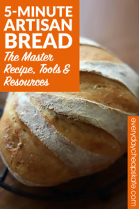 5-Minute Artisan Bread: The Master Recipe, Tools, Resources