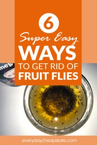 6 Super Easy Ways To Get Rid Of Fruit Flies