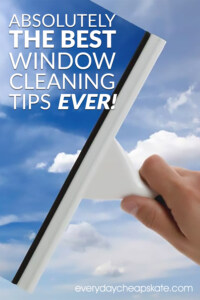 Absolutely the Best Window Cleaning Tips Ever