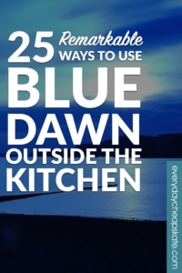 25 Remarkable Ways to Use Blue Dawn Outside the Kitchen