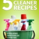 5 Homemade Cleaner Recipes—Eyeglasses, Windshields, Counters, Floors, Carpet