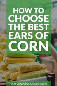 How to Choose the Best Ears of Corn
