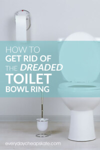 How to Get Rid of The Dreaded Toilet Bowl Ring