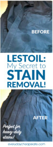 Lestoil: My Secret to Stain Removal!