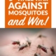 9 Ways to Wage War Against Mosquitoes—and Win!