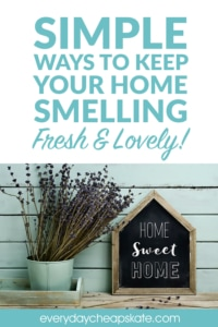 Simple Ways To Keep Your Home Smelling Fresh & Lovely
