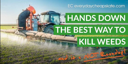 Kill Weeds and It's Not Roundup