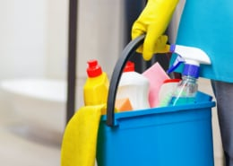 cleaning products in a bucket in the bathroom