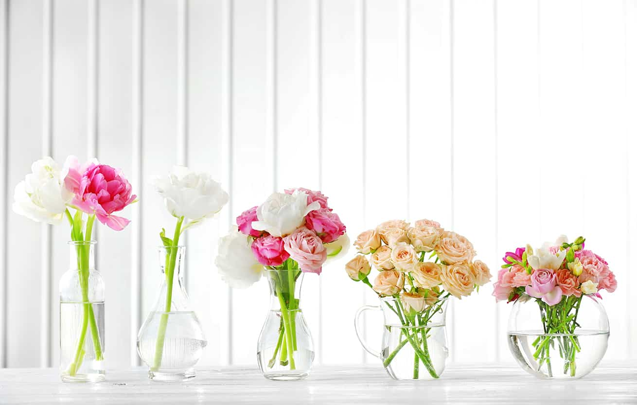 fresh cut flowers in glass vases