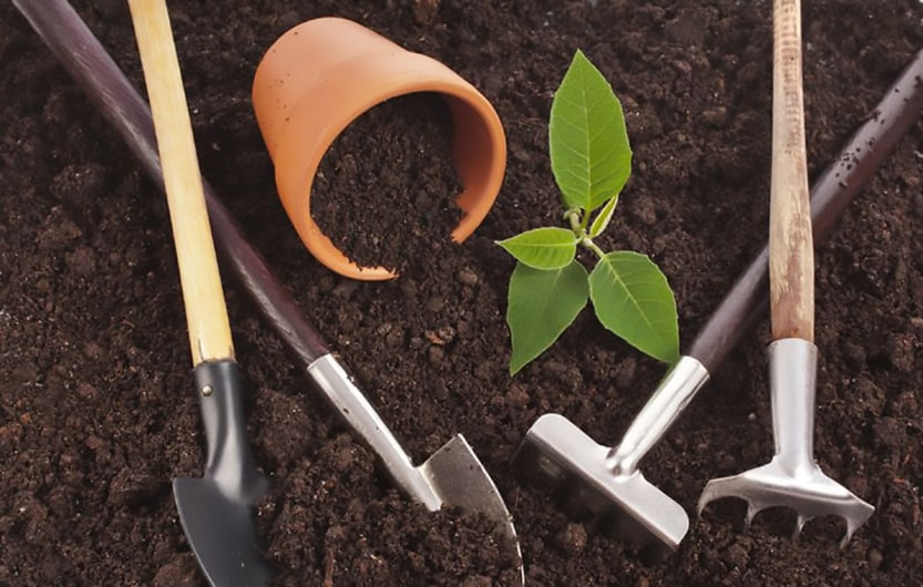 gardening dirt and tools