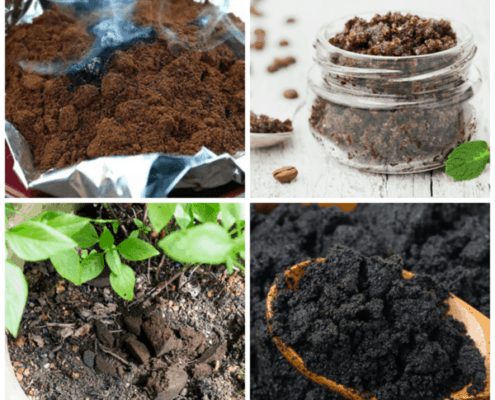 Collage of ways to reuse coffee grounds