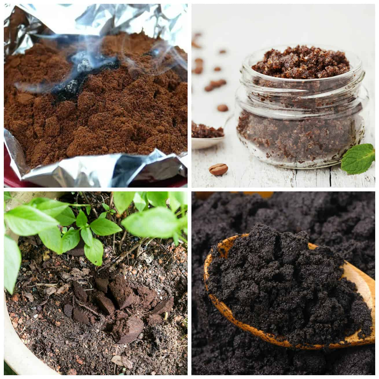 four ways to use spent coffee grounds