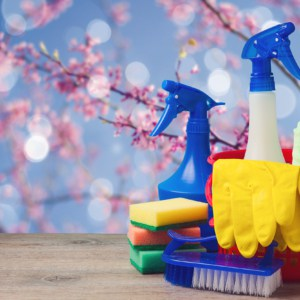 spring cleaning concept with tools and products